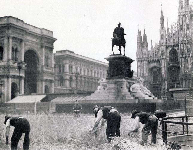 Uno dei cosiddetti 'orti di guerra' in piazza del Duomo a Milano.